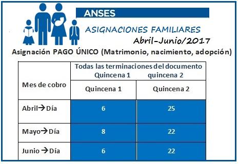 Anses PAGO ÚNICO